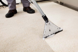 5 Ways to Keep Your Carpets Clean and Safe During COVID-19 and Beyond